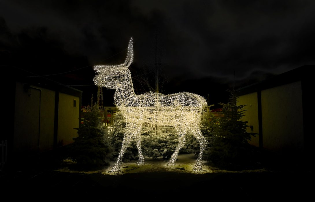 Old Market Christmas Photography Deer lights